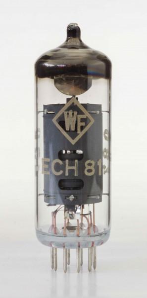 SECH81